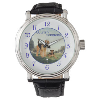 Welsh Terriers Watch
