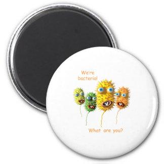 We're Bacteria Magnet