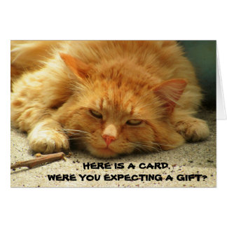 Were You Expecting a Gift? That's Cute. Mean Kitty Card