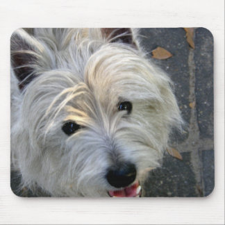 West Highland Terrier Dog Mouse Pad