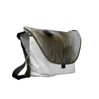 West Highland Terrier Messenger Bag