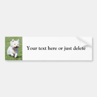 West Highland White Terrier cute photo custom Bumper Sticker