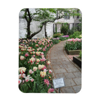 West Side Community Garden Tulip New York City NYC Magnet