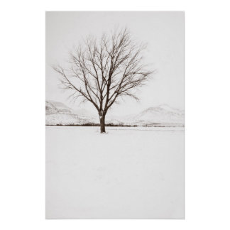 West Texas BLizzard Poster