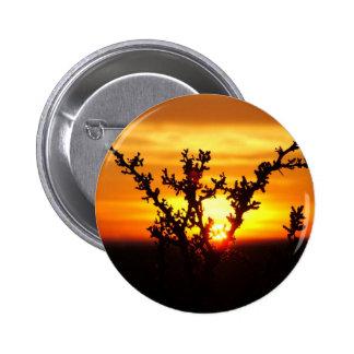 West Texas Desert Sunset Pinback Buttons