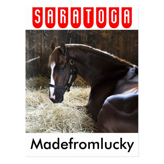 "West Virginia Derby Winner ""Madefromlucky"" Postcard"