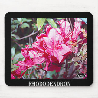 West Virginia Rhododendron Maximum Mouse Pad