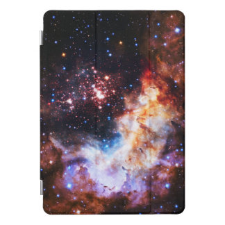 Westerlund 2 iPad pro cover