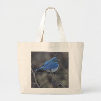Western Bluebird Cold Bags