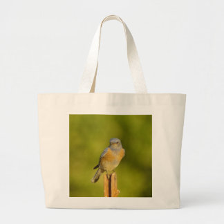 Western Bluebird male Bag