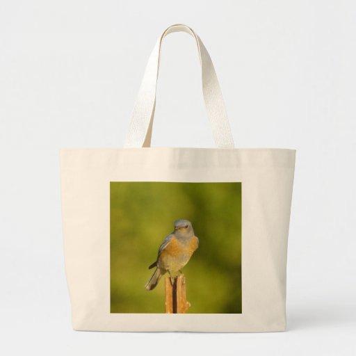 Western Bluebird male Bag