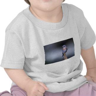 Western Bluebird Tshirt