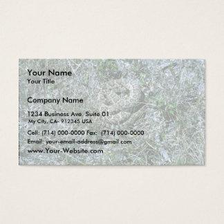 Western Diamondback Rattlesnake Business Card
