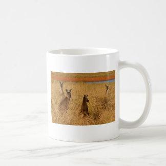Western Grey Kangaroos Coffee Mugs
