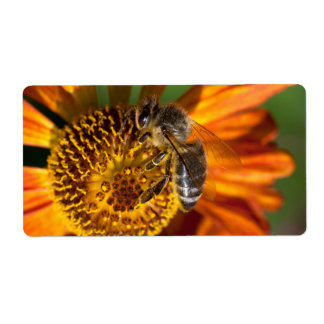 Western Honey Bee Macro Photo Shipping Label