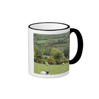 Western Ireland, Dingle Peninsula, broad Ringer Mug