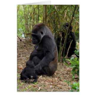 Western Lowland Gorilla - Mom and Baby Card