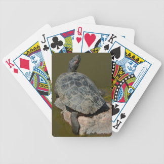 Western Painted Turtle Playing Cards
