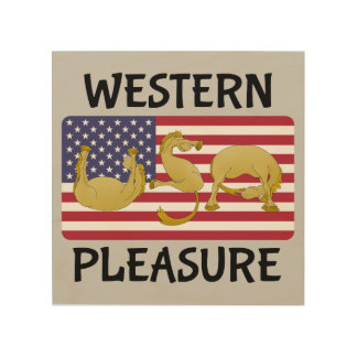 Western Pleasure Horse USA Wood Canvases