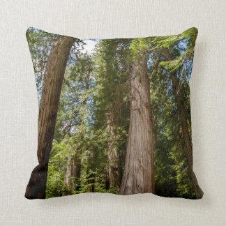 Western Red Cedar Trees Cushion