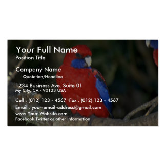 Western Rozella, Australia Business Card Templates