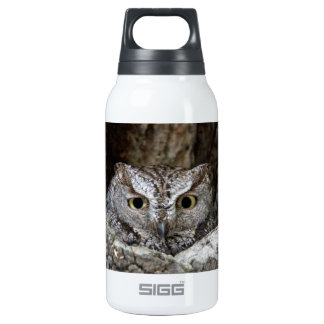 Western Screech Owl 0.3L Insulated SIGG Thermos Water Bottle