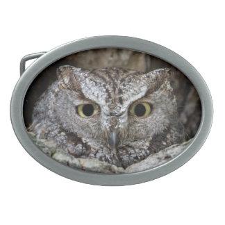 Western Screech Owl Belt Buckle