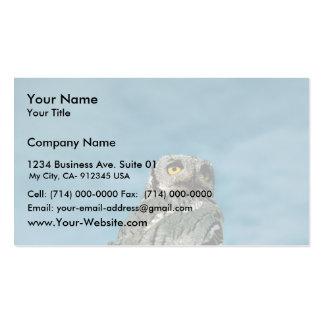 Western screech owl business card template