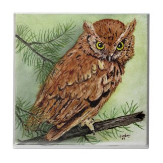 Western Screech Owl Ceramic Tile