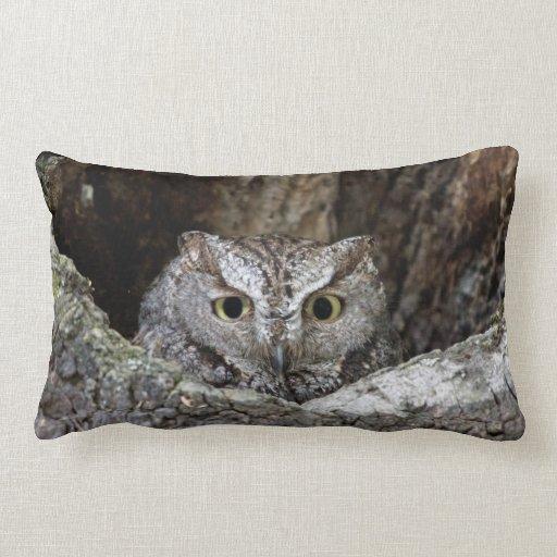 Western Screech Owl Pillows