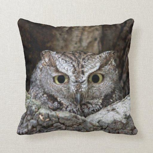 Western Screech Owl Pillow