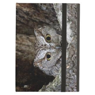 Western Screech Owl iPad Folio Case