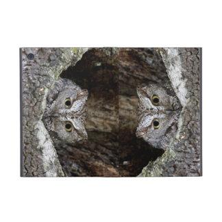 Western Screech Owl iPad Mini Cover