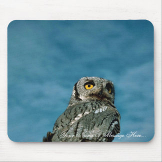 Western screech owl mousepad