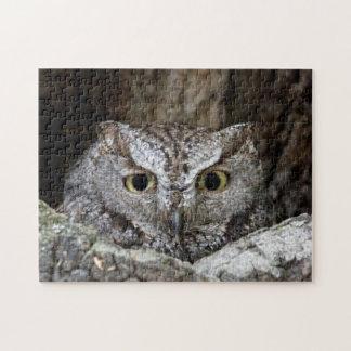 Western Screech Owl Puzzles