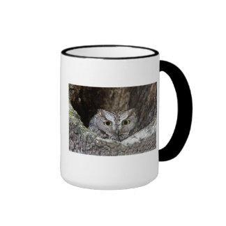 Western Screech Owl Ringer Mug
