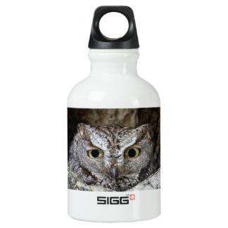 Western Screech Owl SIGG Traveller 0.3L Water Bottle