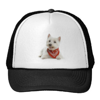 Westie Hat/Cap Cap
