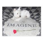 Westie Imagines World Peace Postcard