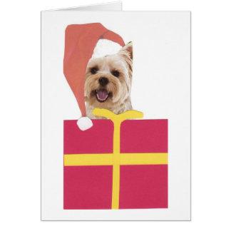 Westie Santa Hat Gift Box Card