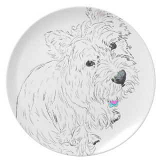 Westie siting at my feet plate