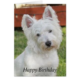 westie_west_highland_terrier_dog_birthday_card r65c3eff2e99f42f89d7720ac0f168fc6_xvuat_8byvr_324 happy birthday westie dog gifts on zazzle au