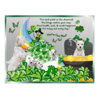 Westie You've Got Mail - St Patrick's Day Version Postcard