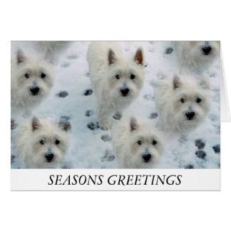 Westies Snow Christmas Card Mum Dad Friend etc