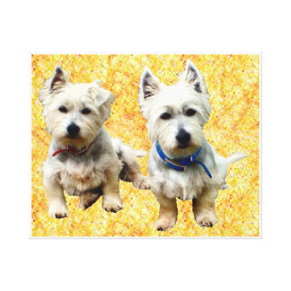 Westies Wall Canvas. Stretched Canvas Prints