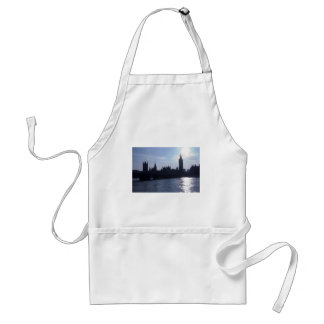 Westminster Palace - Houses of Parliament Aprons