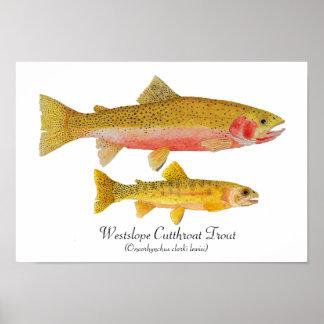 Westslope Cutthroat Trout Artwork Poster