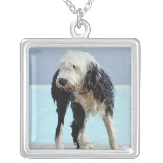 Wet Dog By a Swimming Pool Pendants