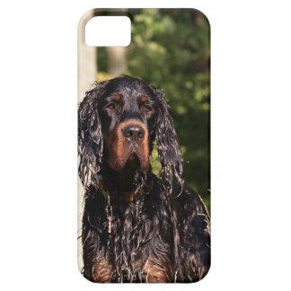 Wet Gordon Setter iPhone 5 Case