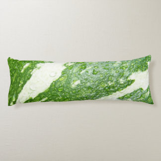 Wet, green, young, striped pumpkin photo body cushion
